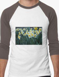 White Daffodils Men's Baseball ¾ T-Shirt