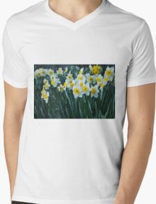 White Daffodils Mens V-Neck T-Shirt