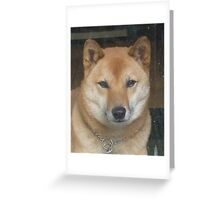 Sporty, at his best Greeting Card