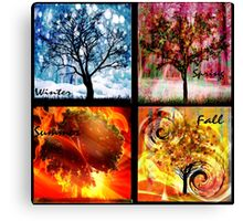 Four Elements of the Seasons  Canvas Print