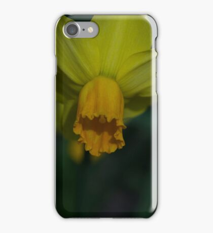 trompet narcis iPhone Case/Skin