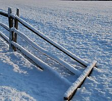 Snowy Fence by sarahshanely