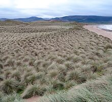 view of dunes at the maharees by morrbyte