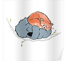 Red Panda + Koala Bear Sleeping Poster