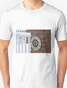 Freezing Temps Unisex T-Shirt