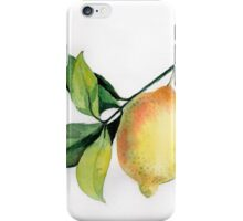 Branch of  lemons with leaves iPhone Case/Skin