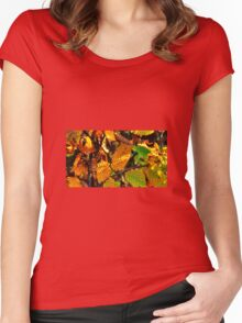 Autumn Leaves Women's Fitted Scoop T-Shirt