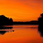 Sunrise over the River Trent, Nottingham. by naranzaria