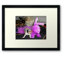 Is that you, Ma? Framed Print