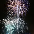Firework Night 1 by lizh467