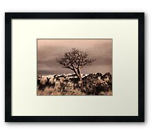 Tree at Dusk in Waikoloa Framed Print