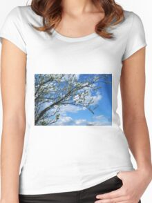 Spring Tree Blossoms Women's Fitted Scoop T-Shirt