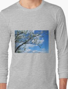 Spring Tree Blossoms Long Sleeve T-Shirt