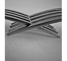 Tines Entwined Photographic Print