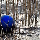 Blue buoy by greywolf26