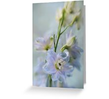 Delphiniums Greeting Card