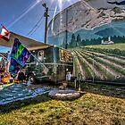 Lawn Boler'ing by Steve Walser