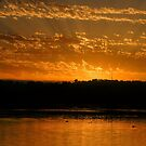Sunrise Over Lake Joondalup by GerryMac