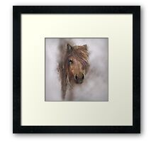 Horse equine animals,wildlife,wildlife art,nature Framed Print