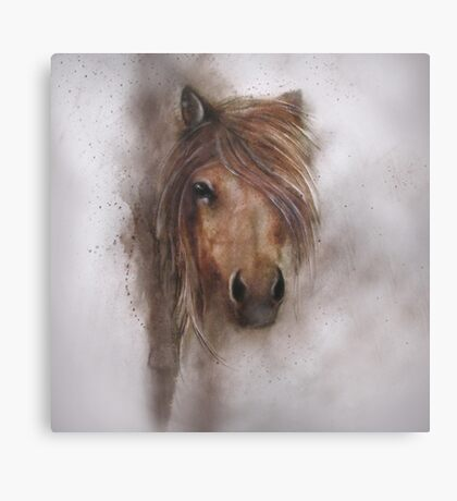 Horse equine animals,wildlife,wildlife art,nature Canvas Print