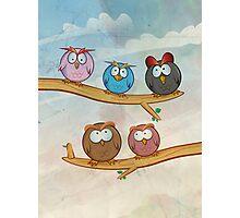 funny owl group cartoon on tree Photographic Print