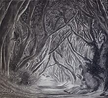 The Dark Hedges by Gary Rudisill by garyrudisill