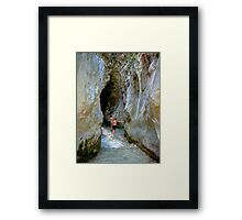 Nature ... naturaleza. Framed Print