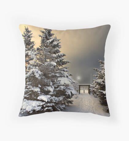 January 30 Throw Pillow