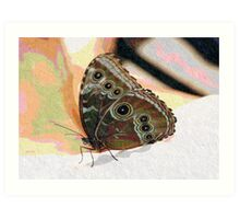 Butterfly Oil Pastel Art Print