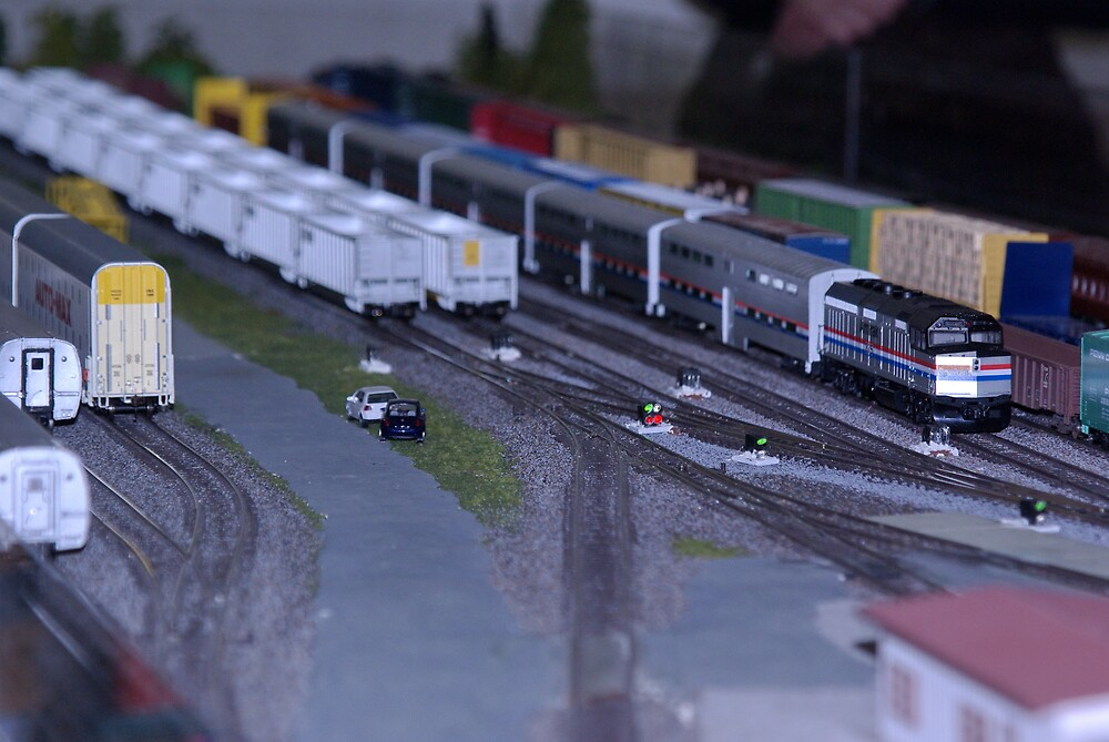 Model Train Show in HO Scale   by marksphotos20