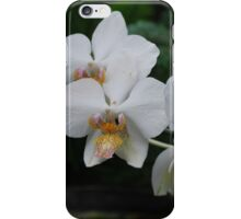 White Orchid group iPhone Case/Skin
