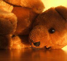 Teddy Tears by Salina Sharudin
