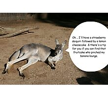Fruity roo at the zoo Photographic Print