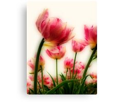 Pink Tulips for Mom Canvas Print