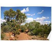 West Macdonnell Ranges Poster