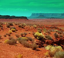 Valley of the Gods by soulfocus