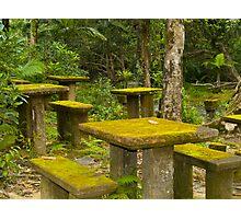 Picnic in the rainforest - Paronella Park - Queensland - Australia Photographic Print