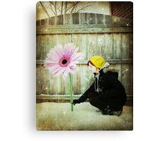 think spring! - part 2 Canvas Print