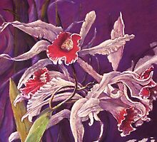 'Orchids' by Helen Miles