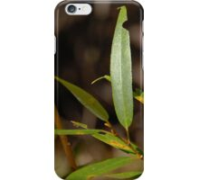 Autumn Willow iPhone Case/Skin