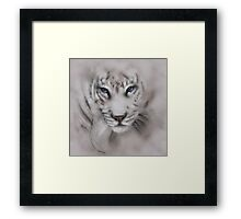 Tigers white tigers tiger white tiger wildlife,wildlife art,nature, gifts, Framed Print