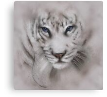 Tigers white tigers tiger white tiger wildlife,wildlife art,nature, gifts, Canvas Print