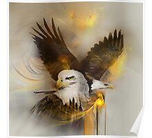 "Eagle eagles ""bald eagle""  ""bald eagles"" animals,wildlife,wildlife art,nature Poster"