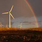 wind farming by Ralph  Meznar