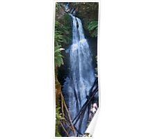 first creek falls errinundra plateau 1 Poster