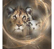 "lion lamb ""lion lamb"" Christ Jesus Christian Spirituality gifts popular ""best selling"" beautiful Photographic Print"