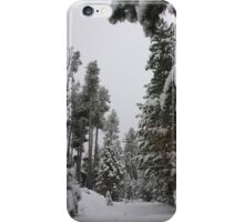 XC Skiing in Washoe Meadows State Park iPhone Case/Skin