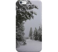 Snowfall in Washoe Meadows State Park iPhone Case/Skin