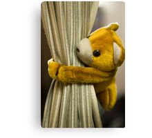 A curtain with a cute stuffed toy Canvas Print