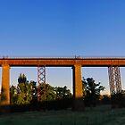Railway Bridge at Taradale by Hicksy